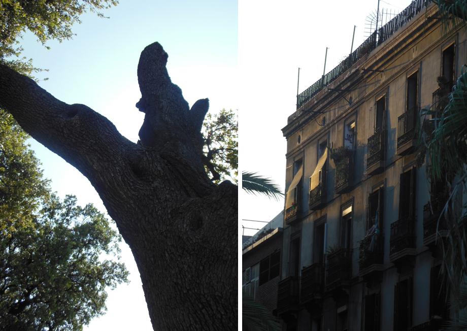 Chasing shadows akit studios - Nice home barcelona ...